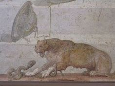 II.4.10 Pompeii.  Wall painting with symbols of Dionysus.  Detail of panther attacking snake.  Now in Naples Archaeological Museum.  Inventory number 8795.