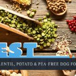 6 Best Chiweenie Dog Food Plus Top Brands for Puppies & Seniors Best Cheap Dog Food, Best Dog Food, Dry Dog Food, Salmon And Sweet Potato, Sweet Potatoes For Dogs, Dog Treat Recipes, Dog Food Recipes, Human Grade Dog Food, Grain Free Dog Food