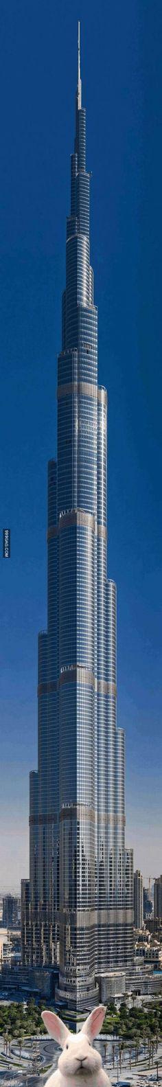 Meanwhile In The Burj Khalifa