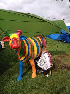 De ranja koe een groot succes