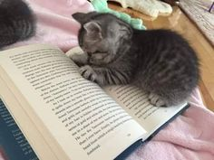 Never too young to start reading