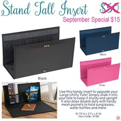 Thirty-One Stand Tall Insert September Customer Special