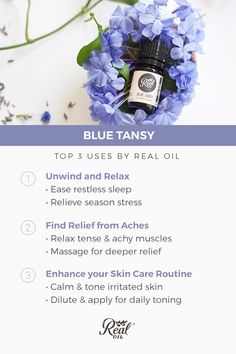 Learn about Blue Tansy, the least talked about, but incredibly powerful rare essential oil. Deep Sleep Essential Oils, Blue Tansy Essential Oil, Essential Oil Bottles, Essential Oil Uses, Young Living Essential Oils, Essential Oil Diffuser, Oils For Scars, Herbal Remedies, Natural Remedies