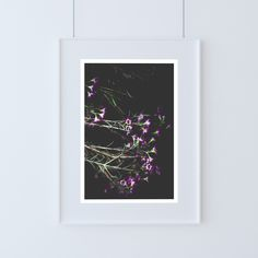 """Shop our original botanical photographs that make for unique wall art to compliment your home or office decor. They also make for a one-of-a-kind gift. You can find """"Wax Flower"""" (along with many other flowers) in our Etsy Shop currently offered in the following sizes: 5x7, 8x10, and 11x14."""