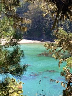 Mendocino, CA, this is the best place for a picnic.