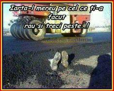 Monster Trucks, Funny Pictures, Humor, Random, Fanny Pics, Funny Pics, Humour, Moon Moon, Funny Images