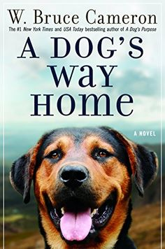 A DOG'S WAY HOME july'17