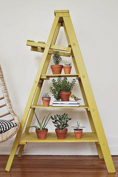 Repurpose a ladder into a modern plant stand!