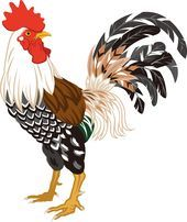 Rooster Painting, Rooster Art, Rooster Logo, Chicken Crafts, Chicken Art, Chicken Images, Chicken Quilt, Chicken Painting, Chickens And Roosters