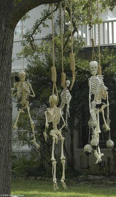 IDEAS & INSPIRATIONS: Halloween Decorations, Halloween Decor: Outdoor Halloween Decorations