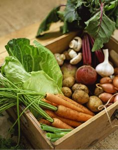 Root cellar veggies