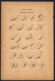 1890s flipside calligrafia stampa pagina lettere di forloveofold