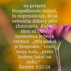 Healing Words, Catholic Prayers, Taekwondo, Christian Quotes, Herbs, Truths, Christianity, Texts, Christ