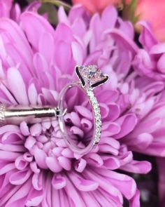 An incredible E Princess Cut on the Juliette Engagement Ring. So many sparkles. What do you guys think of our ultra thin stiletto prongs? Princess Cut Rings, Princess Cut Engagement Rings, Beautiful Engagement Rings, Beautiful Rings, Wedding Engagement, Diamond Engagement Rings, Wedding Bands, Princess Wedding, Wedding Venues