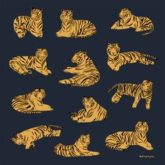 Tiger Scarf from Leah Goren