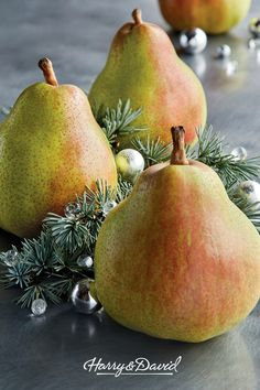 Royal Riviera Pears are a holiday tradition. Our famous pears are grown and tended in our Rogue Vall Food Baskets For Christmas, Food Gift Baskets, Holiday Gift Baskets, Christmas Food Gifts, Holiday Gifts, Onion Relish, Holiday Traditions, Christmas Pictures, Pears
