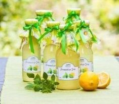 Picture of Bottles with lemon balm syrup in the garden stock photo, images and stock photography. Lemon Balm, Cantaloupe, Homemade, Fruit, Drinks, Bottle, Recipes, Food, Gardening