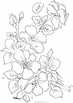 [rosas+silvestres.jpg]