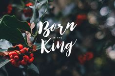 Advent: Born Is The King A reading plan Christmas Time Is Here, Christmas Love, Christmas Wishes, Christmas Cards, Christmas Decorations, Christmas Ideas, Xmas, Christmas Background Photography, Christian Wallpaper