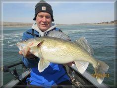 Walleye Fishing Guide Service and Charters: Dakotas, Iowa, Nebraska, Minnesota- MVGS