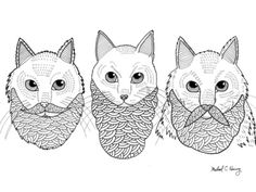 cats with beards