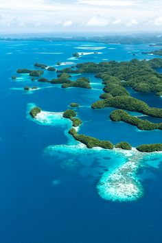 Palau, Rock Islands, UNESCO protected area. Many of the islands are off limits for people!