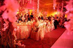 a million dollar wedding....
