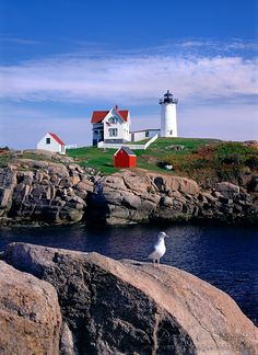 I've been to this sweet little lighthouse, the Nubble Light, in Maine. Even on a colder, windier day than this, it was gorgeous and iconic.