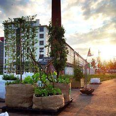 Garden Mania @ Strijp-S (Eindhoven, the Netherlands)