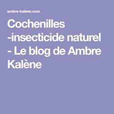 Cochenilles -insecticide naturel - Le blog de Ambre Kalène