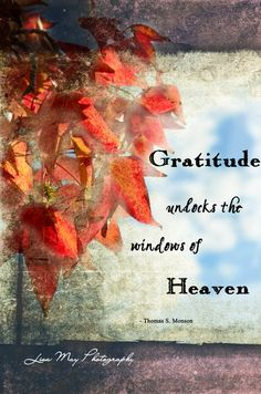 Gratitude Unlocks The Windows Of Heaven - A Quotation from Thomas S. Gratitude Quotes, Attitude Of Gratitude, Thankful Quotes, Happiness Quotes, Positive Thoughts, Positive Quotes, Random Thoughts, Positive Affirmations, Deep Thoughts