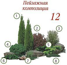 Every beautiful cottage garden has common principles that make them a success. Learn about the fundamentals you need to create your very own cottage garden. Privacy Landscaping, Hillside Landscaping, Modern Landscaping, Outdoor Landscaping, Front Yard Landscaping, Backyard Landscaping, Landscaping Ideas, Evergreen Landscape, Evergreen Garden