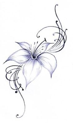 Lily tattoo, every nomad has a tattoo of the top part of 1 of their arms Foot Tattoos, Body Art Tattoos, Tattoo Drawings, Small Tattoos, Sleeve Tattoos, Lily Tattoo Sleeve, Tattoo Sketches, Small Lily Tattoo, Trendy Tattoos