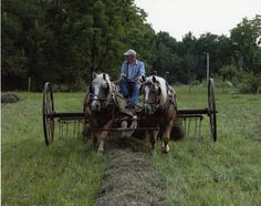 Farm Life – 2011 Capture the Heart of America Photo Contest