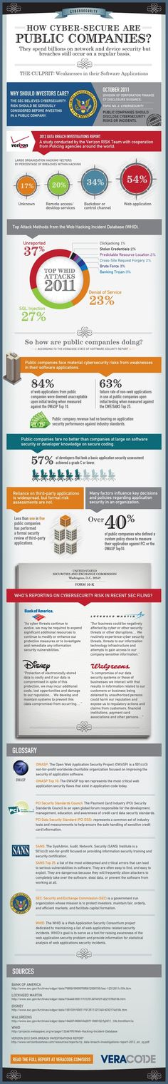 Cybersecurity Risks in Public Companies Infographic