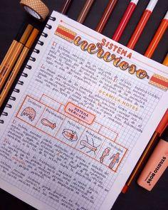 Bullet Journal School, Bullet Journal Notes, Bullet Journal Lettering Ideas, Bullet Journal Writing, Life Hacks For School, School Study Tips, High School Writing, Pretty Notes, Good Notes