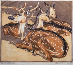 Norbertine Bresslern-Roth - Fallow Deer (maybe Chital?) - born 1891, pronounced the greatest animal painter of her time.