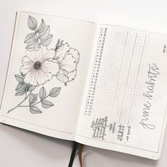 My June #bulletjournalhabittracker