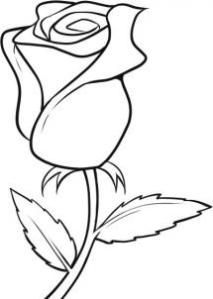 easy rose drawing simple draw flowers flower roses clipart outline sketches clipartbest