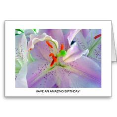 Gorgeous Purple and White Lilly Greeting Card