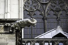 Reconstructed / repaired gargoyle on the Dom in Cologne, Germany