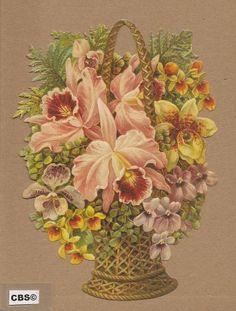 Mand met Orchideeën poezieplaatjes 5038