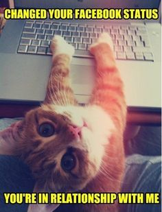 So cute facebook Pinned From Junglegag - Click for more!