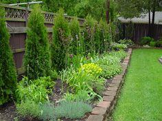 http://www.allaboutmygarden.com/wp-content/uploads/2010/06/Libertiny-Garden-May-13-2010-044.jpg