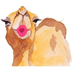 Carly Martin Kissing Camel Waiting On Martha (£28) ❤ liked on Polyvore featuring home, home decor, wall art, car home decor, watercolor wall art, car interior decor, handmade wall art and car wall art