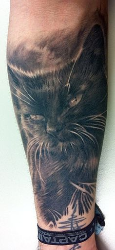Realistic cat tattoo on forearm