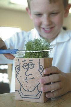 Here's a version of the Chia Pet planter! Only it's a Chia Samson!