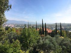 Bulgaria's Sintica Winery is rooted in wine history | spaswinefood