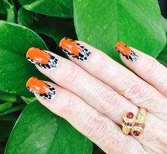 Inspired by nature - Red-backed poison dart frog