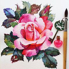 Rose by @samiradragonfly in Instagram #rose #roses #art #watercolor #painting #paint #pink #watercolour #draw #drawing #flower #flowers #цветы #watercolor #watercolour #aquarelle #waterblog #worldofartists #drawing #painting #art #artist #artshelp #artgallery #artweinspire #topcreator #inspiringwatercolors #inspiration #flowers #botanical #botanicalart #illustration #акварель #вдохновение #иллюстрация #pink
